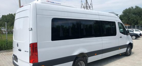 Carosari auto Radauti, Power Bus