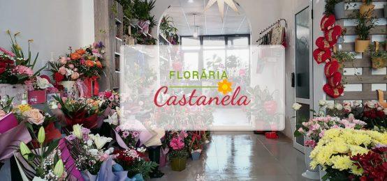 Florarie Radauti | Floraria Castanela