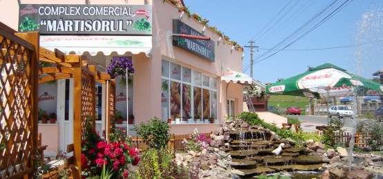Hotel restaurant Martisorul. Brutarie, Catering, Patiserie, Sali de nunti, Cofetarie Cacica Radauti