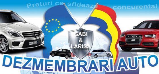 Dezmembrari auto Suceava Gabi & Larisa