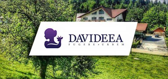 Pensiunea Davideea – Locul ideal pentru relaxare