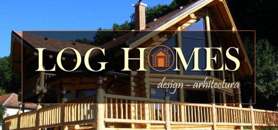 Constructii manuale a caselor din busteni | SC LOG HOMES